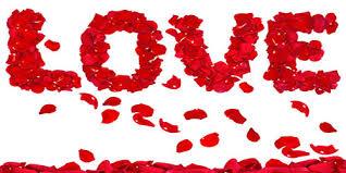 بالصور رسائل الحب والغرام , كلمات حب للعشاق 2284 2