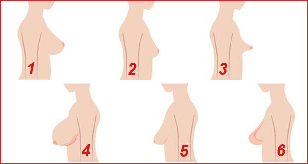 صور انواع ثدي المراة بالصور , صور عن اختلاف انواع ثدي المراة