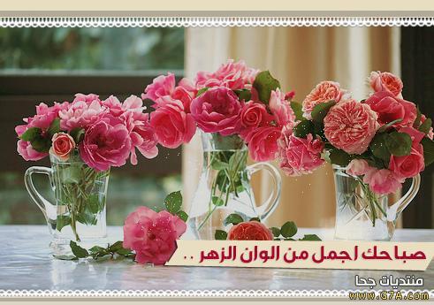 بالصور اجمل صباح الخير , صور مكتوب عليها صباح الخير 2758 4