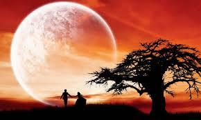 صور صور الحب , اجمل صور للحب