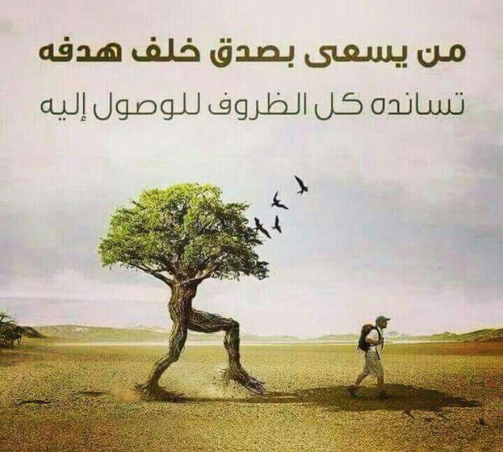 صورة حكمة الصباح , اقوال الحكماء عن الصباح