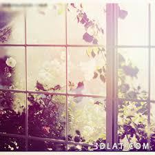 بالصور خلفيات جميلة للواتس اب , اجمل خلفيات الواتس 3189 6