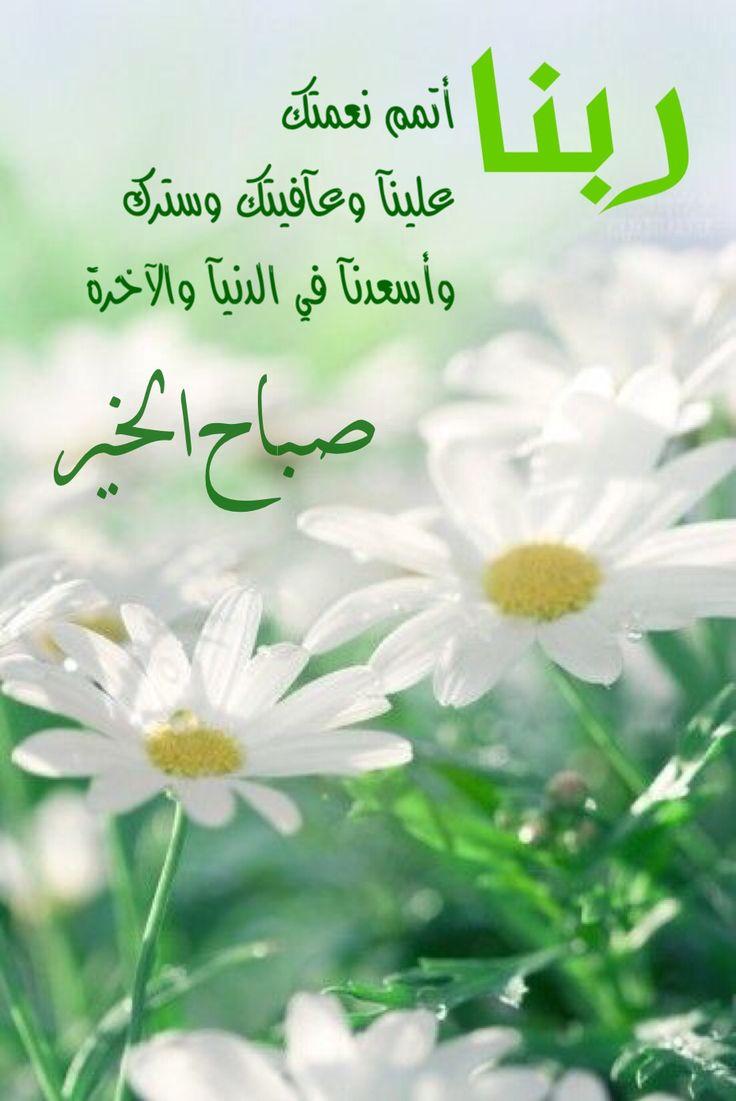 بالصور صباح البركة , صور رائعة صباح البركة 3239 1