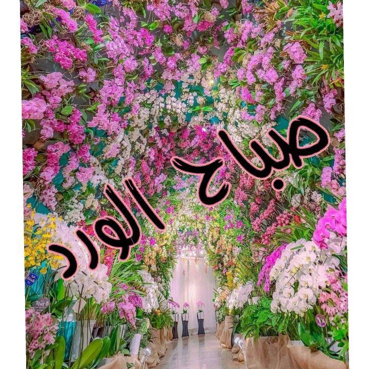بالصور صباح البركة , صور رائعة صباح البركة 3239 5
