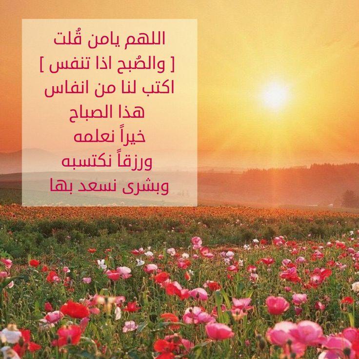 بالصور صباح البركة , صور رائعة صباح البركة 3239 6