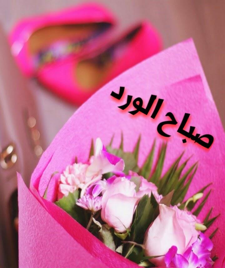 بالصور صباح البركة , صور رائعة صباح البركة 3239 7