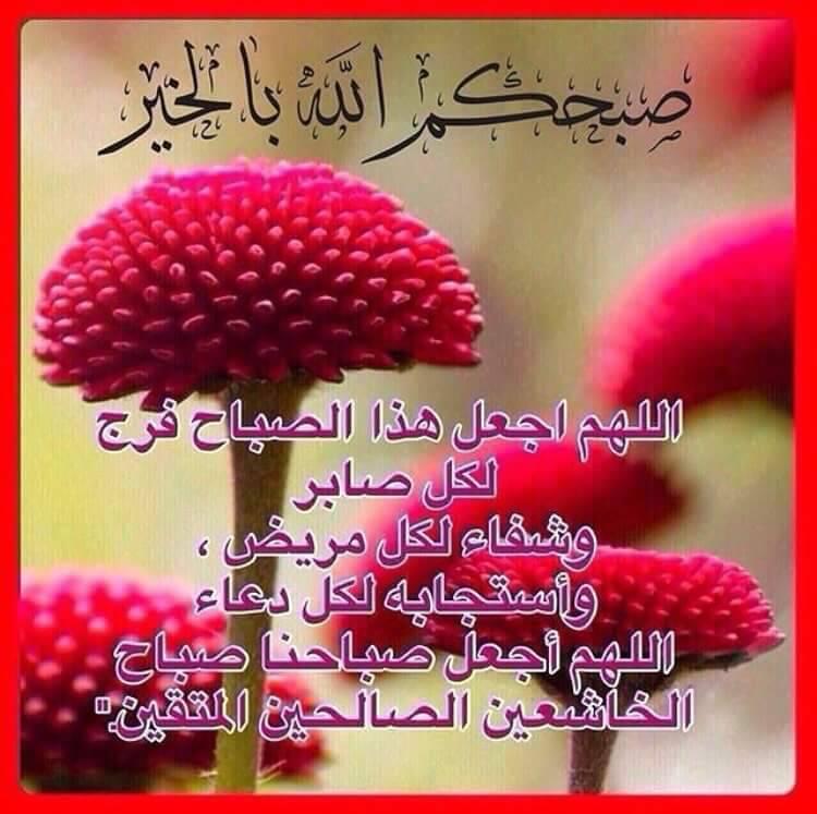 بالصور صباح البركة , صور رائعة صباح البركة 3239 8