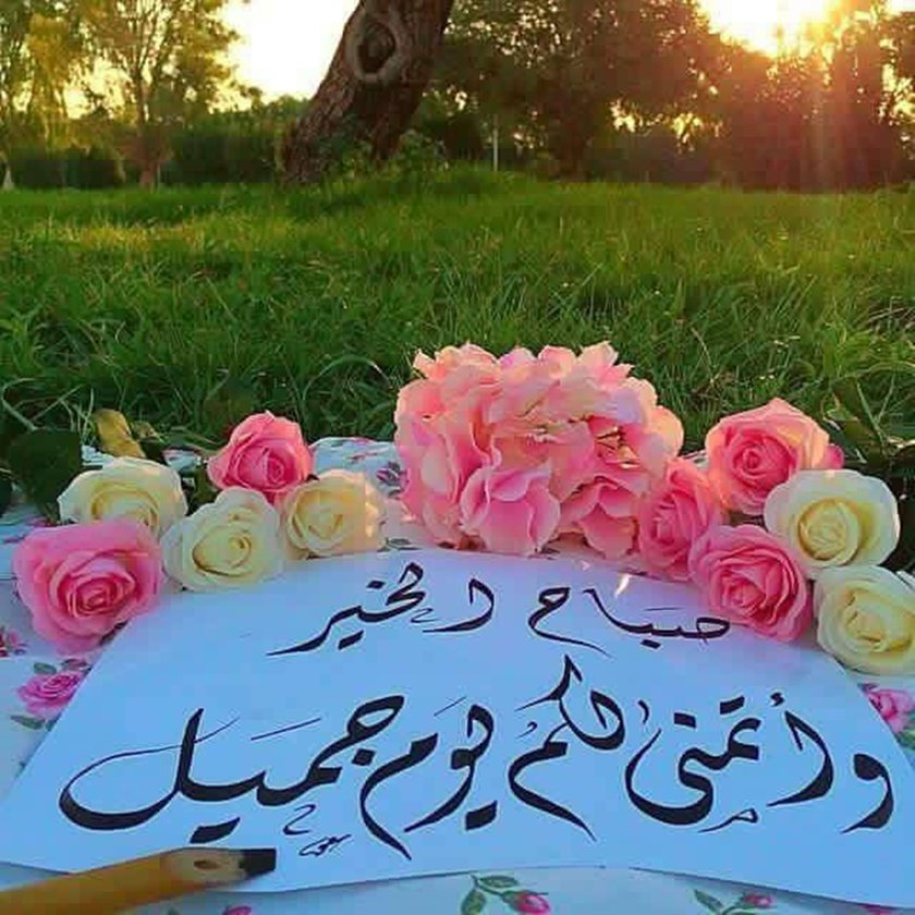 بالصور صباح البركة , صور رائعة صباح البركة 3239 9