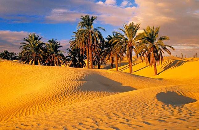 بالصور صور مناظر جميلة , اجمل مناظر الصحراء 4644 2