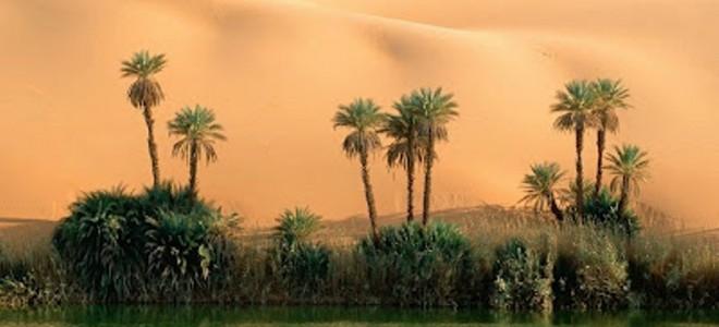 بالصور صور مناظر جميلة , اجمل مناظر الصحراء 4644 8