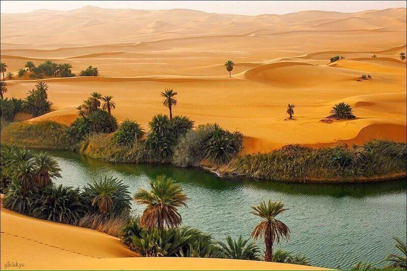 بالصور صور مناظر جميلة , اجمل مناظر الصحراء 4644 9