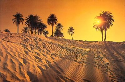 بالصور صور مناظر جميلة , اجمل مناظر الصحراء 4644
