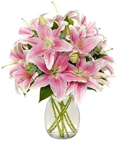 بالصور صور الورد , اجمل واحلى ورد 4661 2