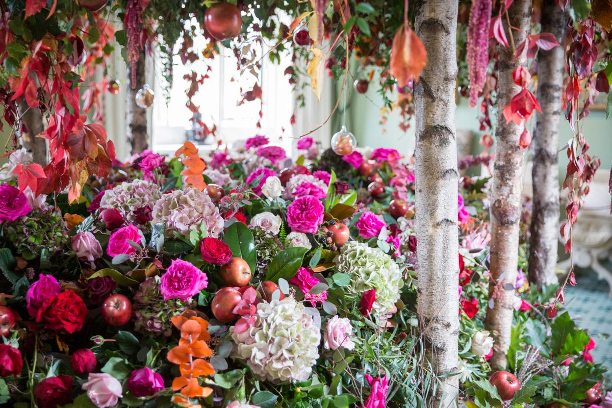 بالصور صور الورد , اجمل واحلى ورد 4661 9