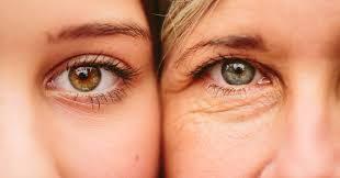 صورة مكونات العين , رسم توضيحي للعين