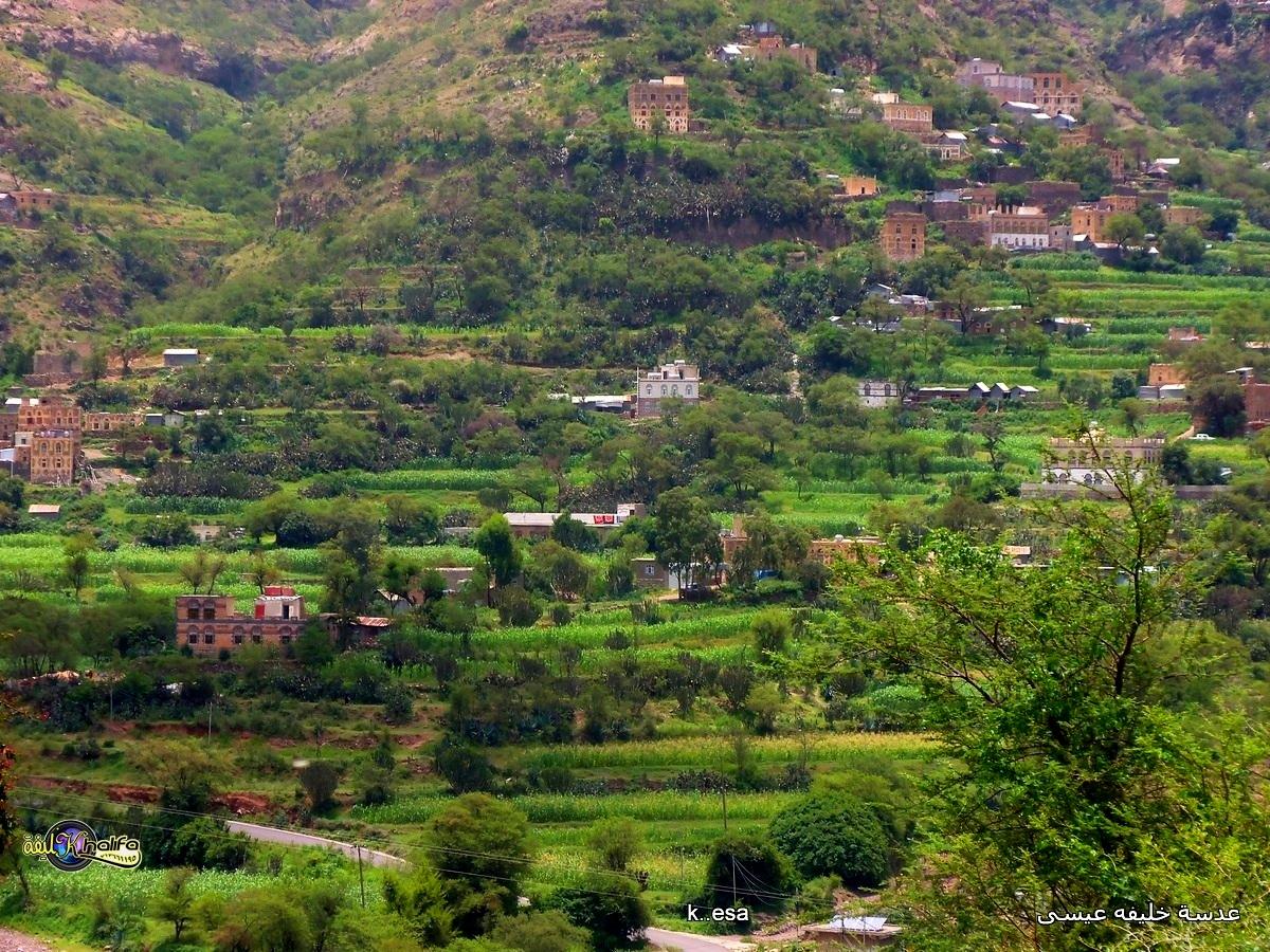 بالصور صور من اليمن , صور من الواقع 5254 1