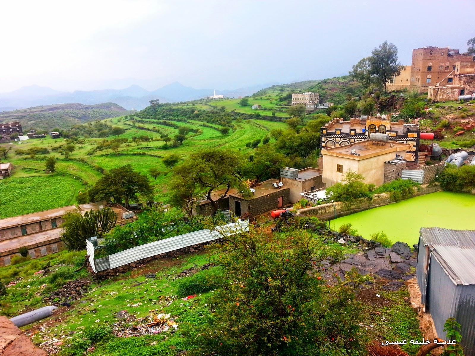 بالصور صور من اليمن , صور من الواقع 5254 9