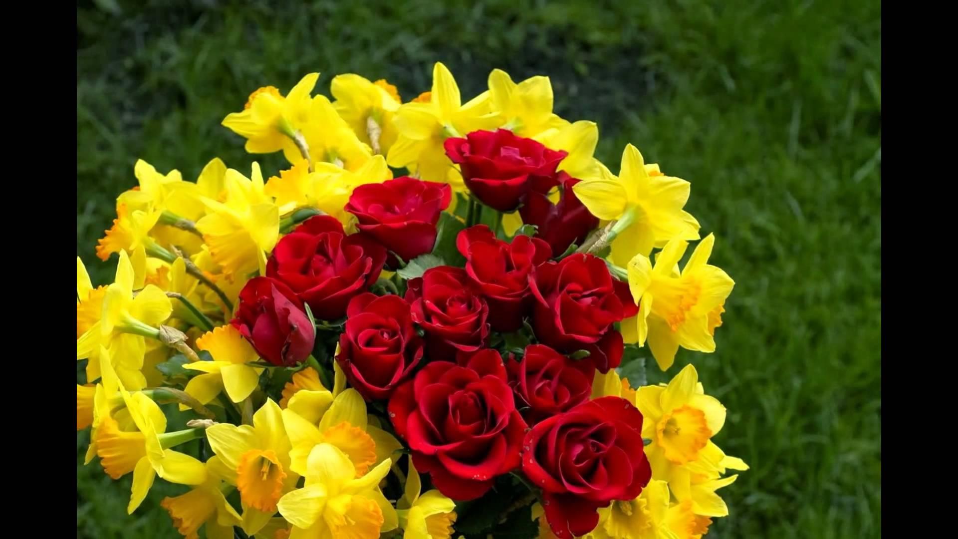 صور بوكيه ورد احمر , معنى اللون الاحمر في الورد