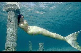 صورة عجائب البحر , اغرب عجائب البحر