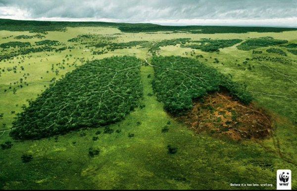 صورة صور عن البيئة , اروع صور عن البيءه مذهله