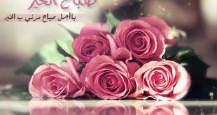 صوره صباح حبيبي , اجمل الصور و المنشورات