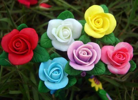 صورة ورود جميلة , اجمل الزهور الطبيعية الملونة
