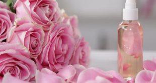 بالصور فوائد ماء الورد , معلومات عن ماء الورد واهم فوائده 260 3 310x165