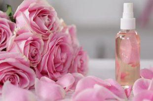 صور فوائد ماء الورد , معلومات عن ماء الورد واهم فوائده