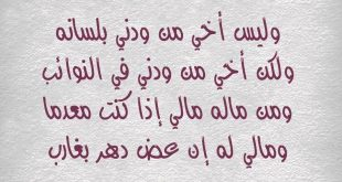 بالصور قصيدة عن الاخ , شعر عن الاخ الاكبر 4804 3 310x165