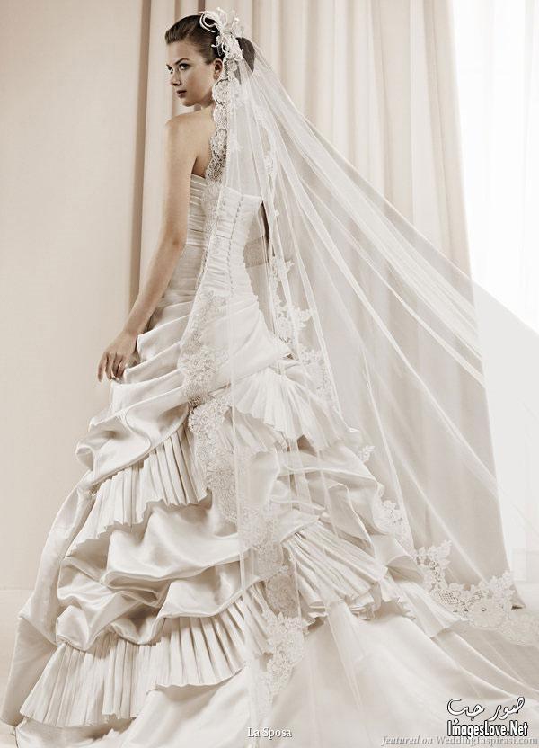 بالصور فساتين زفاف فخمه , اجمل فساتين الزفاف 4839 4