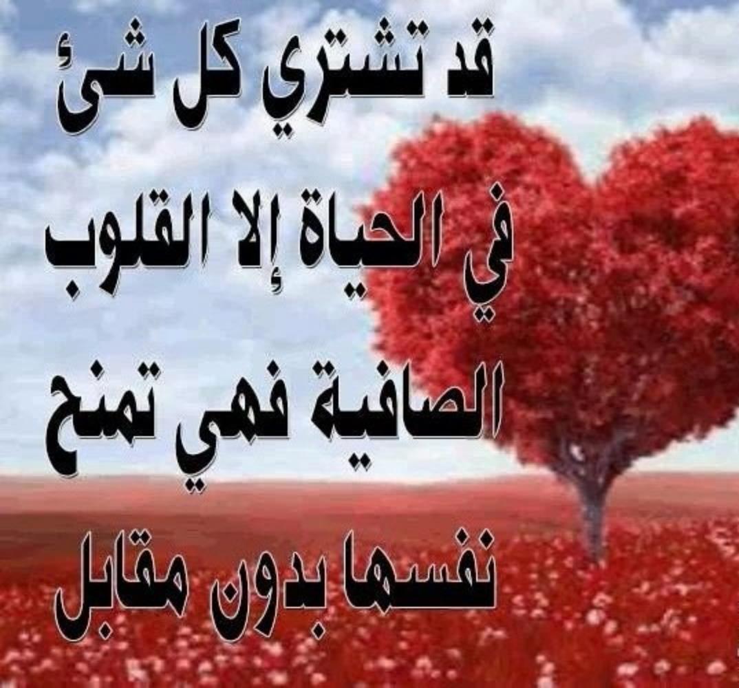 بالصور رسائل الحب والعشق , رسائل حب للحبيب 5854 7