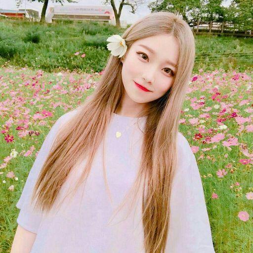 صوره بنات كوريات , الجمال الكوري في صور