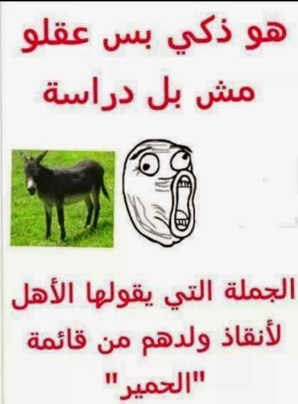 بالصور صور مضحكة فيس بوك , صور هتفطس من الضحك بسببها 1448 3