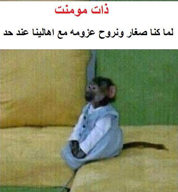 بالصور صور مضحكة فيس بوك , صور هتفطس من الضحك بسببها 1448 4