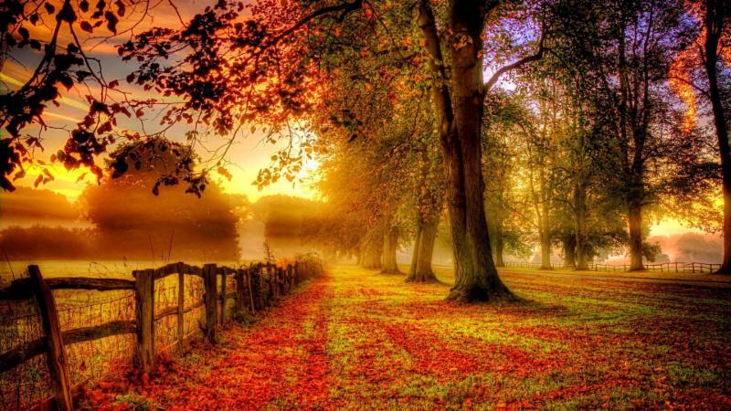 بالصور صور لغلاف الفيس بوك , اجمل صوره لاغلافه متعدده للفيس بوك 301 8