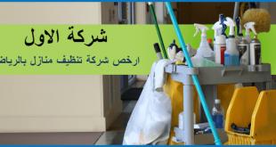 بالصور شركة تنظيف منازل بالرياض , معلومات عن شركات التنظيف للمنازل بالرياض 323 2 310x165