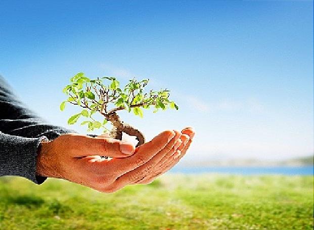 بالصور تعبير عن البيئة , اجمل تعبير قيل عن البيئه 332 1