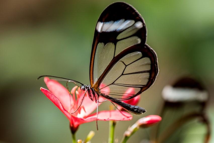 بالصور صور جميله جدا , اجمل المناظر في صور 3565 4