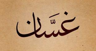 صوره معنى اسم غسان , معنى وصفات اسم غسان