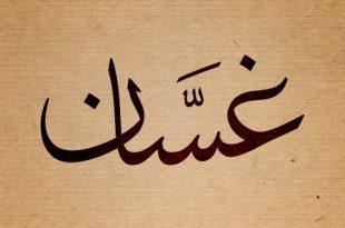بالصور معنى اسم غسان , معنى وصفات اسم غسان 3601 3 310x205