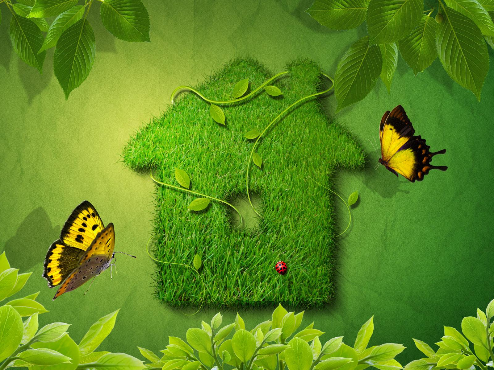 بالصور خلفية خضراء , اروع الخلفيات الخضراء 3644 10