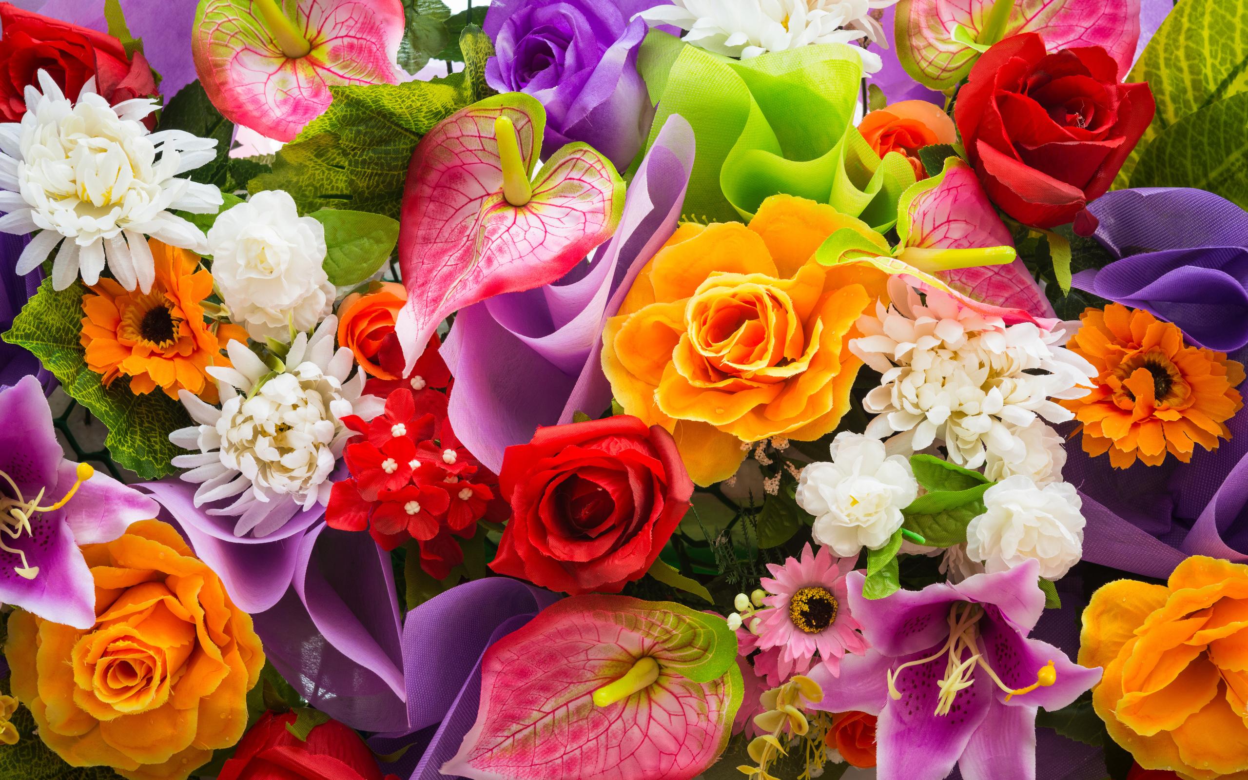 بالصور صور اجمل الورود , اجمل الورود واحلاها 3662 7