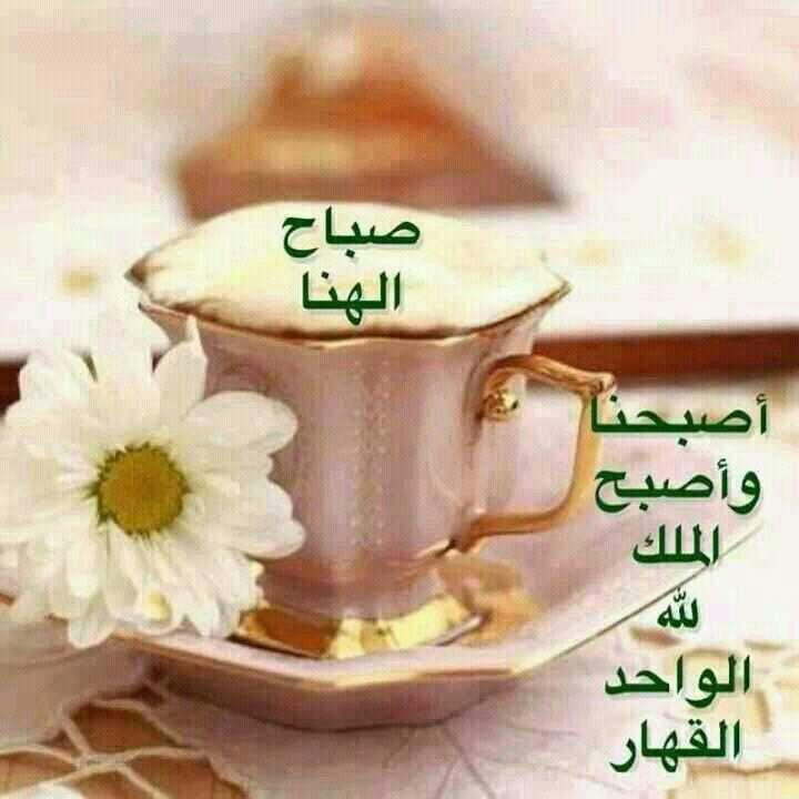 بالصور مسجات صباحية للحبيب , الى حبيبي اروع رسائل الصباح 3665 10