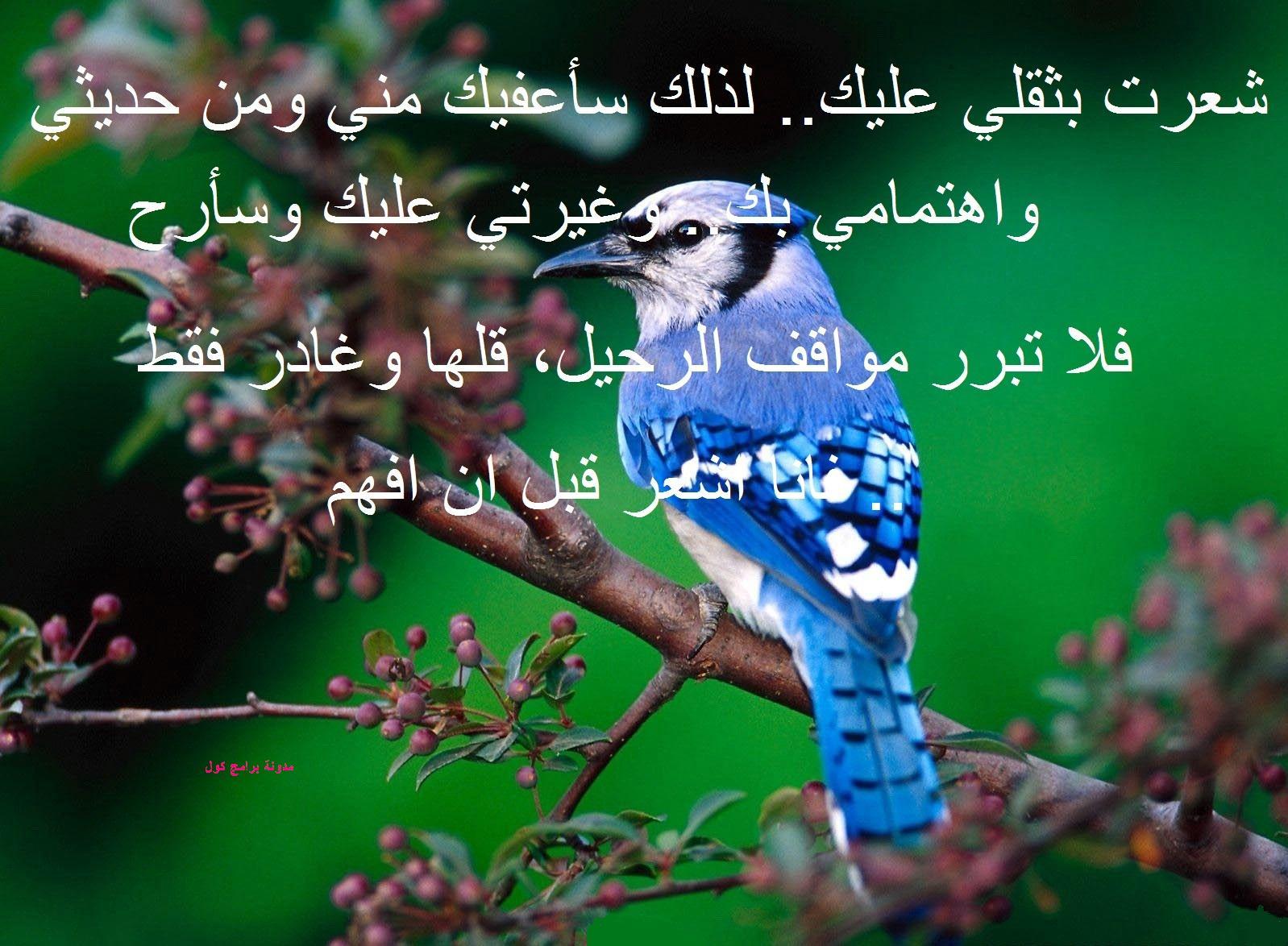 بالصور صور كلام عتاب , اصدق كلمات العتاب 3677 7
