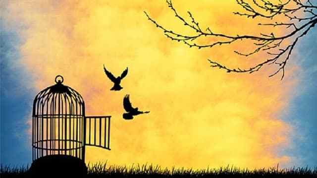 بالصور موضوع تعبير عن الحرية , الحريه وتعبير عنها 420 2