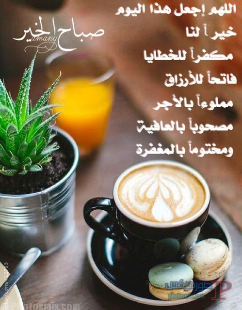 بالصور صور صباحية جميلة , الصباح الجميل و المنظر الخلاب الرائع بالصور و العبارات 5061 6