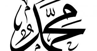 صوره اجمل اسماء الاولاد , اسماء ذكور من القران الكريم و معانيها تعرف عليها