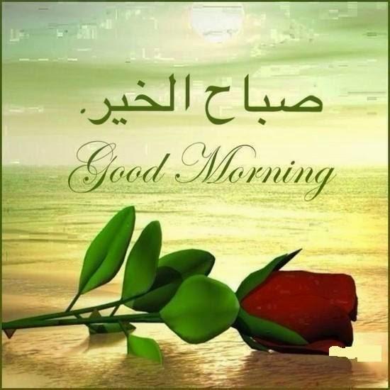 بالصور اجمل صور الصباح , صور لصباح جميل و رائع 5094 7