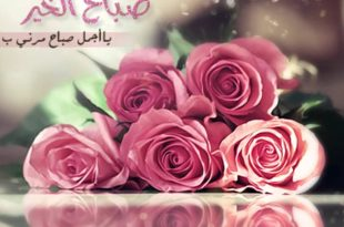 صور صباح الورد حبيبتي , اجمل الصور لصباح الخير والورد
