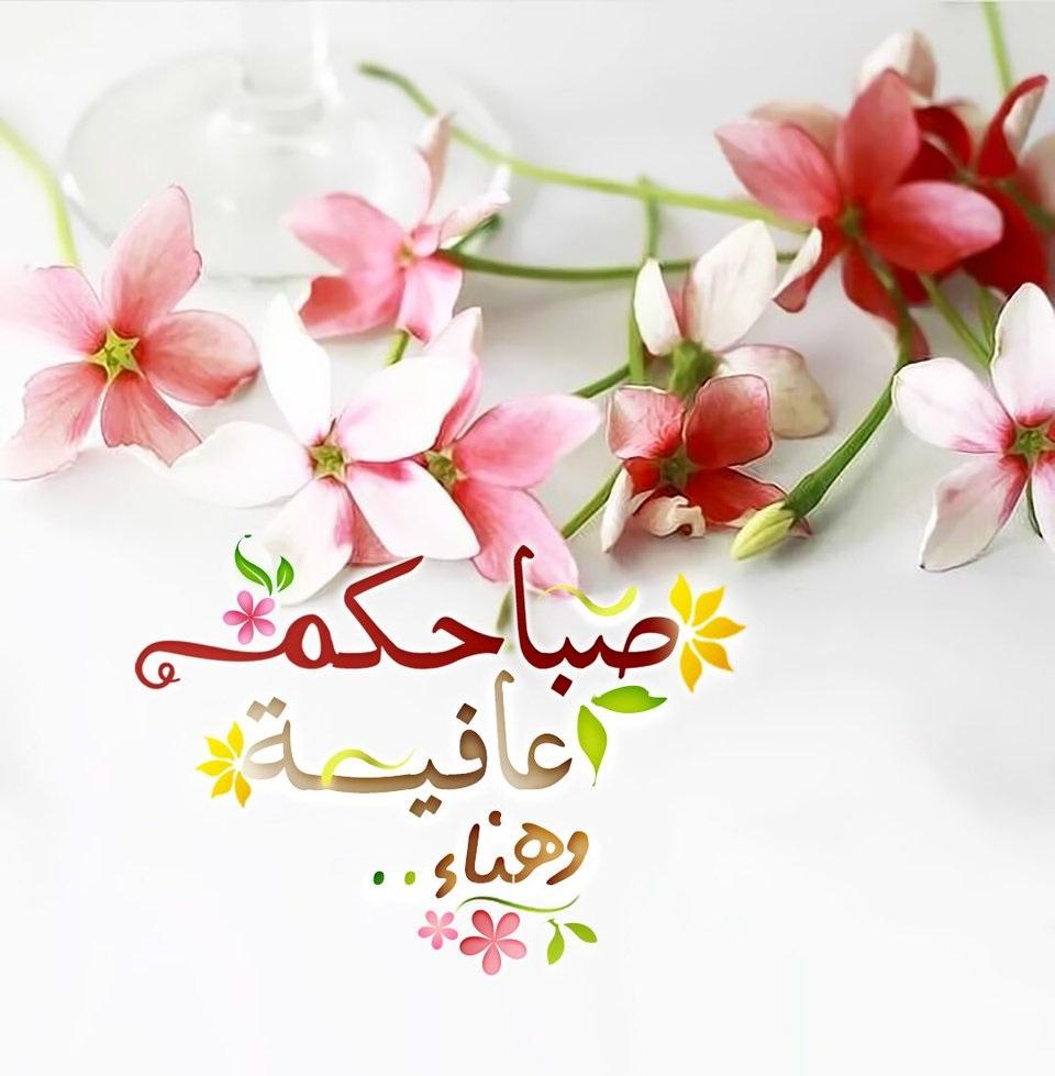 بالصور صباح الورد حبيبتي , اجمل الصور لصباح الخير والورد 6036 3